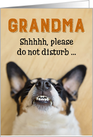 Grandma - Funny Birthday Card - Dog with Goofy Grin card