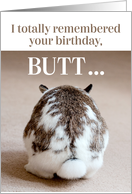 Funny Belated Birthday - Cute Bunny Butt card
