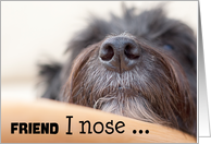 Friend Humorous Birthday Card - The Dog Nose card