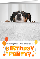 Humorous Birthday Party Invitation - Dog Peeking Over Table card