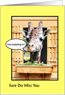 Funny Missing You, Cute Giraffe Just Popping In Through Window card