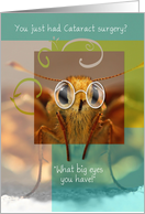 Get Well Soon On Your Cataract Surgery, Bug Eyed Butterfly card