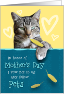 Humorous Mother's Day Card from the Naughty Cat card