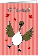 O Canada Day, Canadian Goose Red Stripes Card