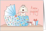Congratulations for New Puppy, with floral bassinette card