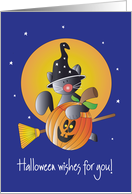 Halloween with Flying Black Kitty on Broom with Pumpkin card