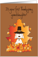 First Thanksgiving, Granddaughter, pilgrim-hatted puppy card