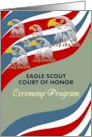 Eagle Scout Court of Honor Ceremony Program, magnificent eagles, red white and blue stripes card
