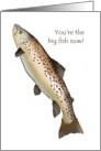 Congratulations on promotion, a big fish card