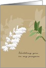 Holding You in my Prayers, Loss of Mother in Law, White Orchids card