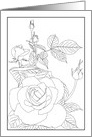 Thinking of You, Rose Bloom and Buds, Coloring card