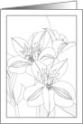 Thinking of You Alstroemeria and Foliage Coloring card