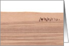 A Camel Train, Blank Note Cards