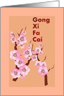 Chinese New Year, Pink plum blossoms, Gong Xi Fa Cai card