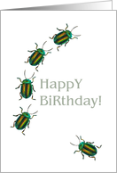 Birthday, Beetles on the move card