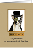 Congratulations best of breed, dog wearing top hat and monocle card