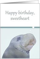 Birthday for Wife, Manatee Blowing Heart Shaped Bubbles card