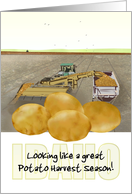 Potato Harvest Season in Idaho, Harvesting and Gathering in the Fields card