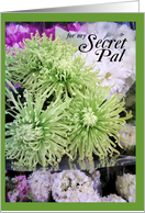 Secret Pal- Green and white flowers card