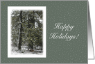 Christmas Happy Holidays ~ Trees in Winter Snow Scene card
