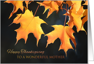 Happy Thanksgiving for Mother - Golden Maple Leaves card