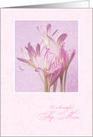 Mother's Day for Step Mom - Soft Pink Flowers card