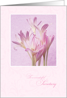 Birthday for Secretary ~ Soft Pink Flowers card