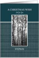 A Christmas Wish for Stepson Black and White Treescape card