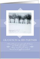 Merry Christmas to Grandson and His Partner ~ Orchard Trees in Winter card