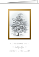 Christmas Wish To Stepson and His Family Snow Scene in the Country card