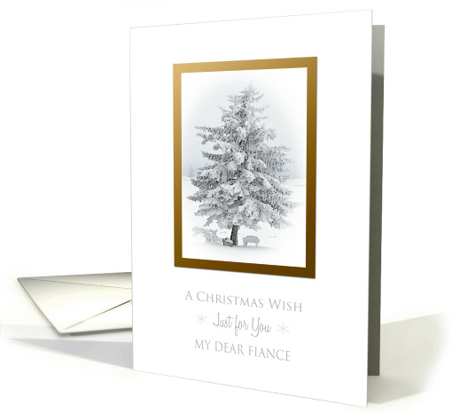 A Christmas Wish To Fiance Snow Scene in the Country card (937975)