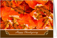 Happy Thanksgiving ~ Colors of Fall/Autumn Leaves card