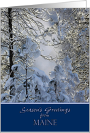 Season's Greetings from Maine ~ Snow Covered Trees card