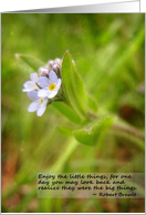 Friendship - Enjoy the Little Things card