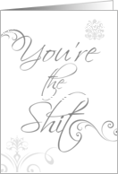 You're The Shit, Humorous Encouragement for Special Person card