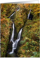 The Lake District, Cumbria - Stock Ghyll Force - Blank card