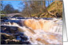 Stainforth Force, waterfall, cascade, The Yorkshire Dales - Blank card