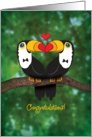 Gay Wedding Congratualtions-Toucan Illustration card