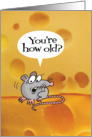 Birthday-Holey Cheeses!-You're how old? Funny Card