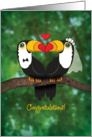 Wedding Congratulations, Two Toucans in Love card