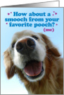Funny Smooch from Pooch Golden Retriever Father's Day Card