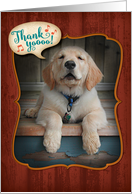 Golden Retriever Puppy-Singing Praises Thank You Card