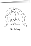Oh, Sheep! Cartoon Belated Birthday card