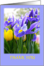 Thank You With Purple Irises Card