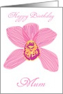 Pink Cymbidium Orchid - Mum Birthday (custom text) card