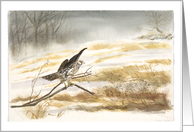 Falcon perched on branch in snow, painting, blank note cards