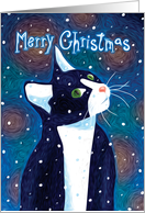 Black & White Cat Watching Snow Fall, Merry Christmas card