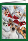Holiday Animal Selfie Christmas Card - Cats, Dogs, and Ferrets card