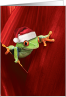 Yule Frogs Christmas...