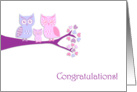 Congratulations On Your New Baby Girl Cute Owls card